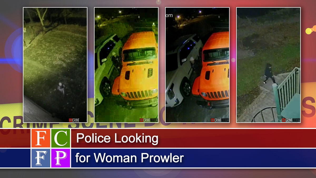 Police Looking for Woman Prowler