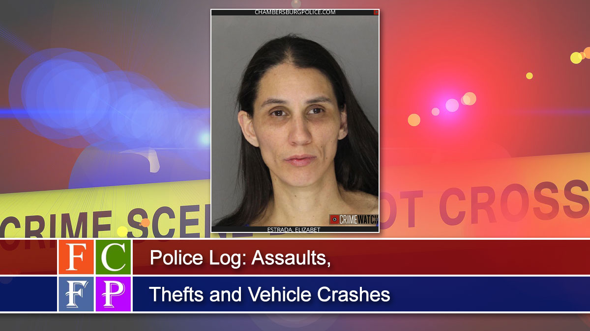 Police Log: Assaults, Thefts and Vehicle Crashes
