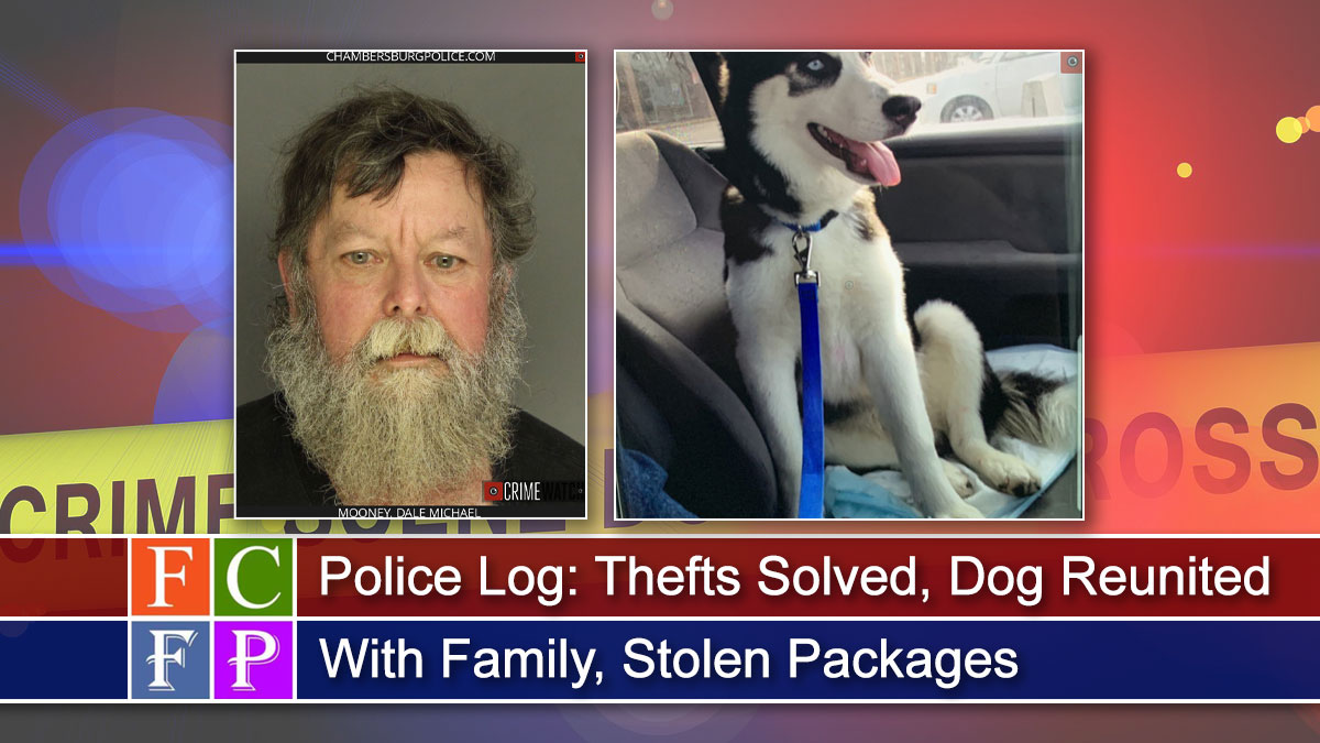 Police Log: Thefts Solved, Dog Reunited With Family, Stolen Packages