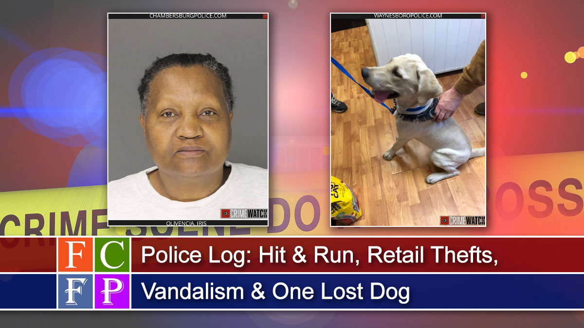 Police Log: Hit and Run, Retail Thefts, Vandalism and One Lost Dog